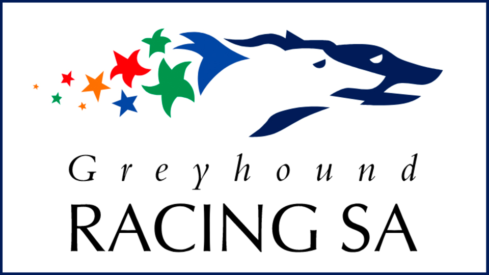 greyhound racing SA 960x540